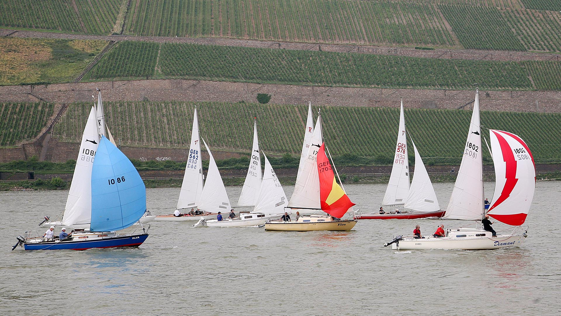 Regatta Hart am Binger Loch